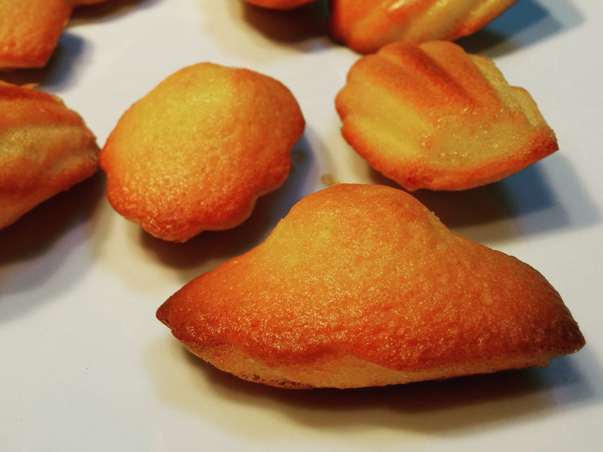madeleines commercy